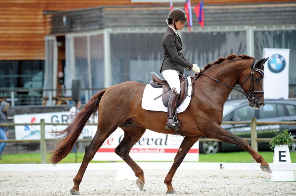 F-S Valentin, Champion of France 4-year-old, 2016